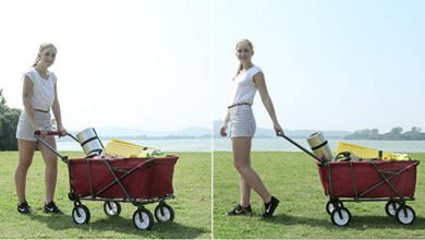 Photo of Top 10 Best Wagon Carts in 2020 Reviews
