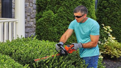 Photo of Top 10 Best Hedge Trimmers in 2020 Reviews