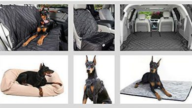 Photo of Top 10 Best Dog Car Seats Covers in 2020 Reviews