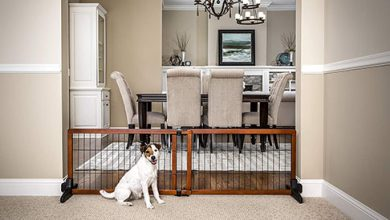 Photo of Top 10 Best Freestanding Wood Pet Gate in 2021