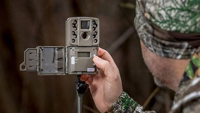 Photo of Best Trail Camera 2020